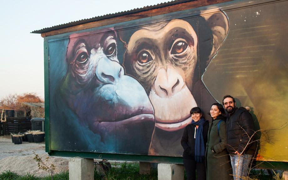 mural-fundación-mona-la-cuentista-ximpàtic-proyecto